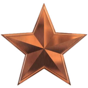 irish business websites hosting bronze